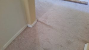 Albuquerque Carpet Re Stretch