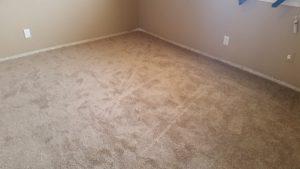 Carpet Install Albuquerque