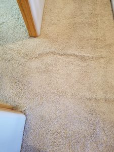 Albuquerque Carpet Re Stretch and Cleaning