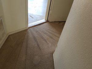 Carpet Cleaning Ventana Ranch Albuquerque