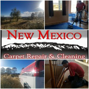 new mexico carpet repair travels