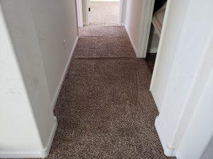 Aluquerque Carpet Restretch