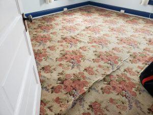 albuquerque carpet cleaning