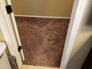 carpet cleaning albuquerque 1.8.19
