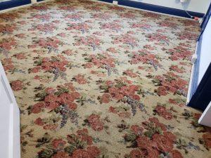 carpet cleaning albuquerque