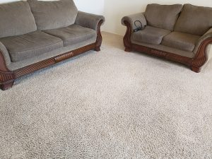 carpet cleaning los lunas