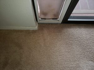 Carpet Repair and Carpet Cleaning Albuquerque